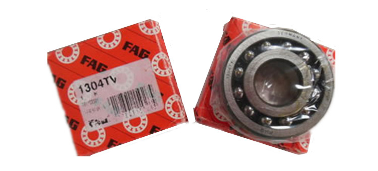 fag self aligning ball bearing supplier