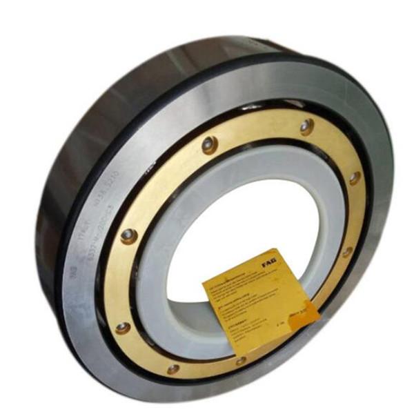 fag insocoat bearing