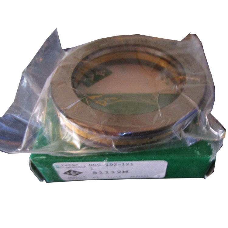 hives thrust bearing ina brand