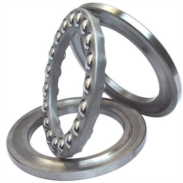 sealed thrust bearing
