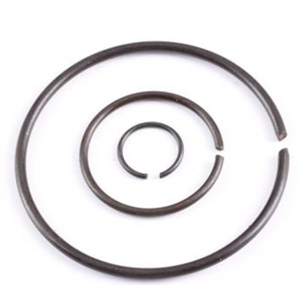 bearing retainer ring