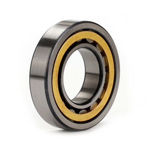 After two years of negotiations, customers from Southeast Asia finally purchased nu 216 bearing