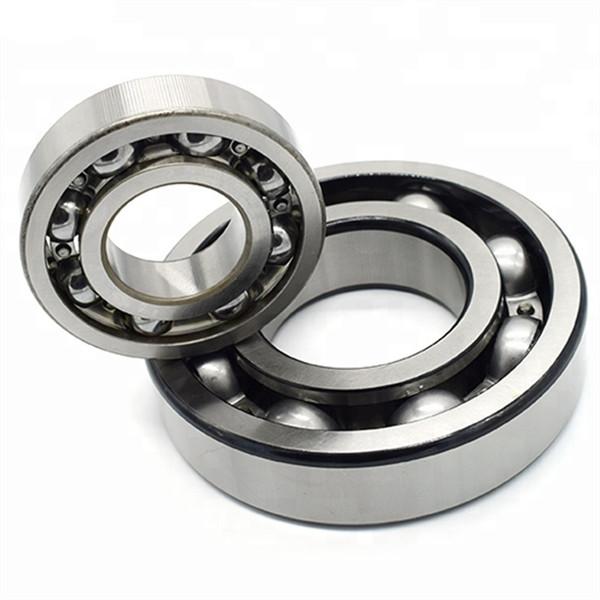 chrome steel vs stainless steel bearings