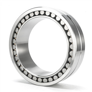 Do you know structure for double cylindrical roller bearing?