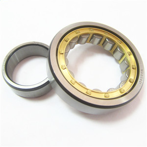 Where are you use the nu roller bearing?