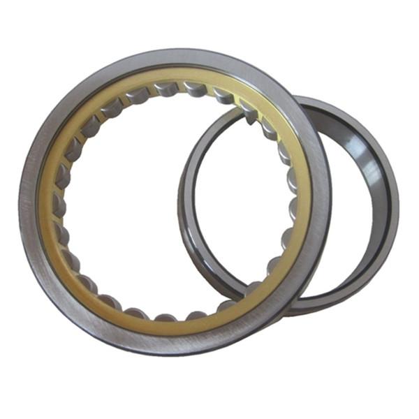 precision nu roller bearing