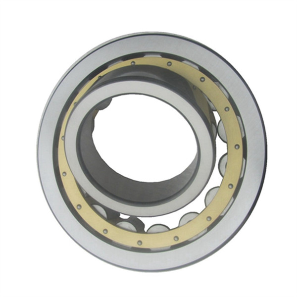 nu roller bearing