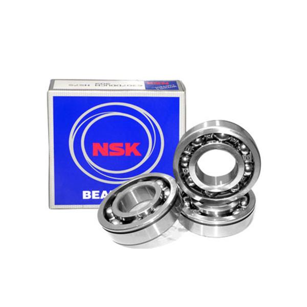 Bearing 6204 price NSK 6mm loose ball bearings supplier
