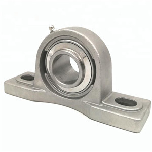 Do you like stainless pillow block bearing?