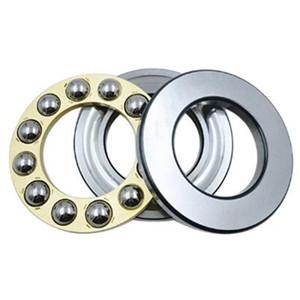 Do you like thrust bearing and radial bearing?