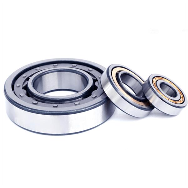 nu1040 bearing