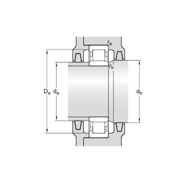nu304 ecp bearing