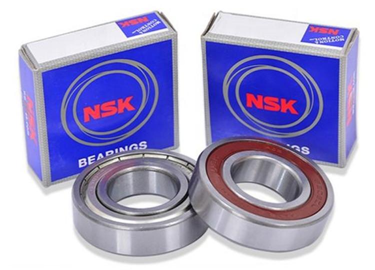 nsk 6007